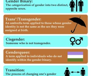 Trans Student Equality Resources