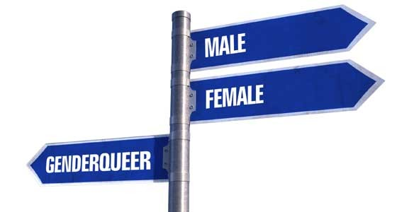 Genderqueer the new frontier – Gay News Network