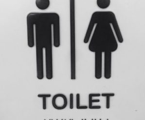 Gender neutral toilets – a thesis