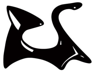 Black-cat-fitzroy